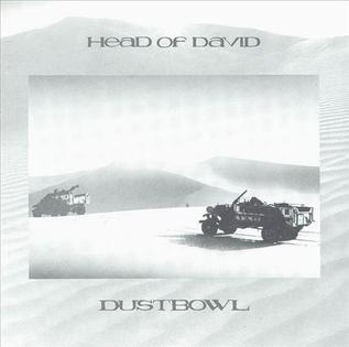 <i>Dustbowl</i> (album) 1988 studio album by Head of David