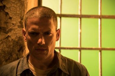 Michael Scofield Wikipedia