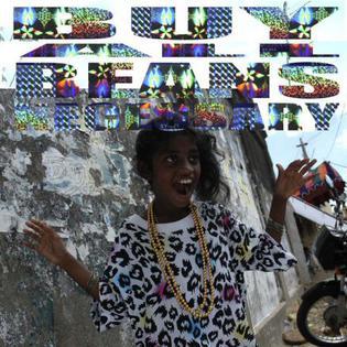 Titelbild des Gesangs Birdflu von M.I.A.