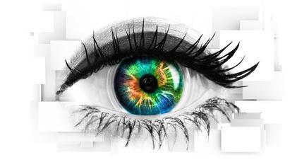 Image result for Celebrity Big Brother