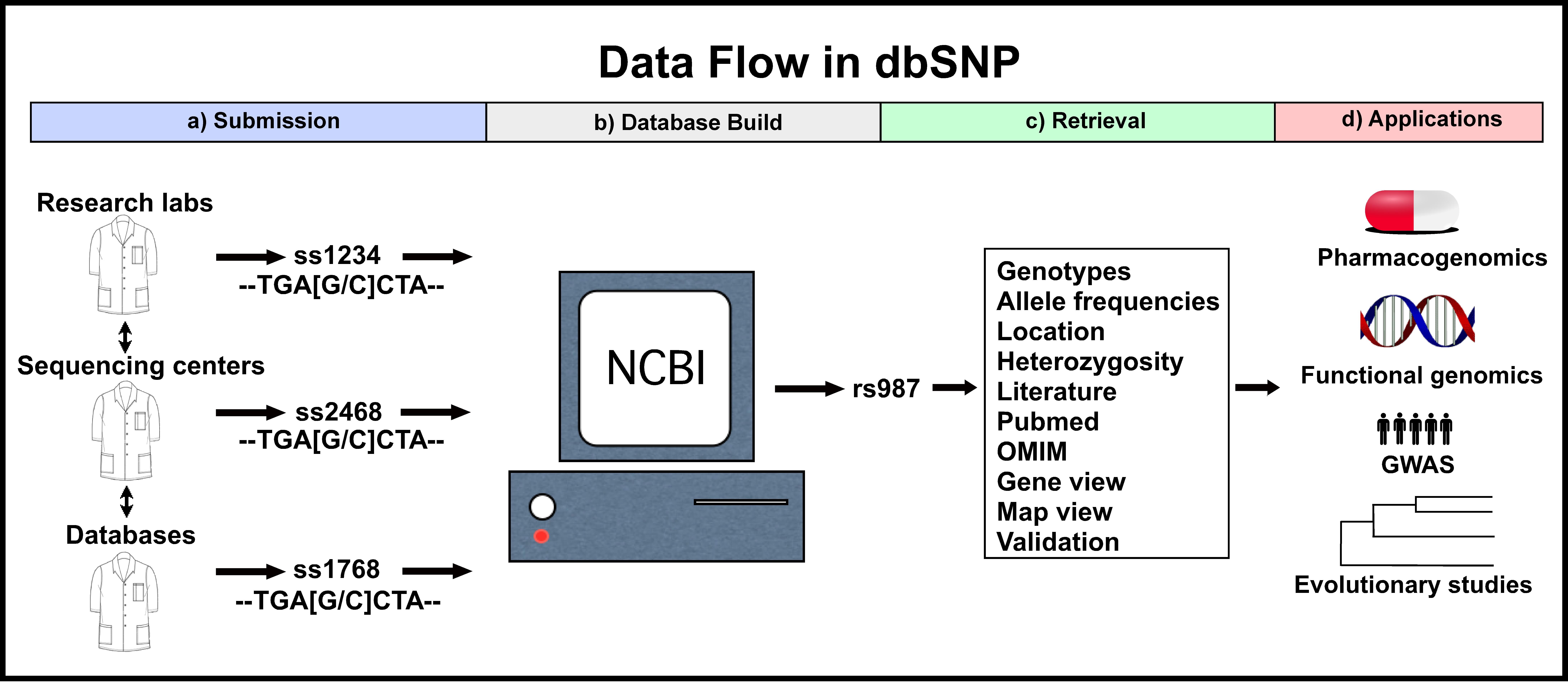 dbSNP - Wikipedia