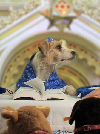 Bark Mitzvah - Wikipedia