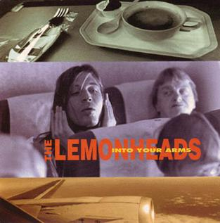 Into Your Arms 1993 single by The Lemonheads
