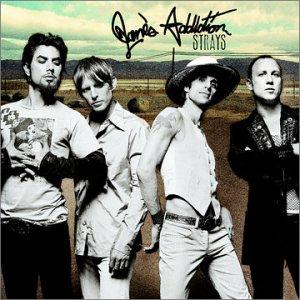 <i>Strays</i> (Janes Addiction album) album
