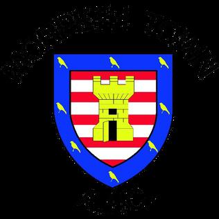 Morpeth Town A.F.C. Association football club in England