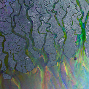 Image result for alt j an awesome wave album cover