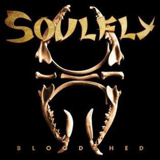 Bloodshed (song) song by Soulfly