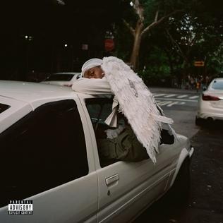 Negro Swan.jpg