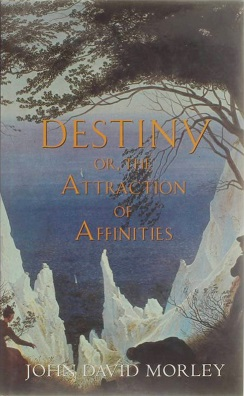 Destiny or, The Attraction of Affinities (novel).jpg