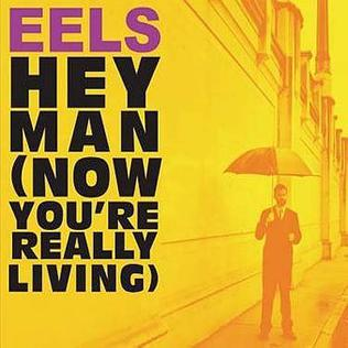 Eels - My Timing Is Off