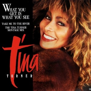 What You Get Is What You See 1987 single by Tina Turner