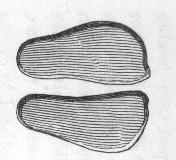 Clickfootprints