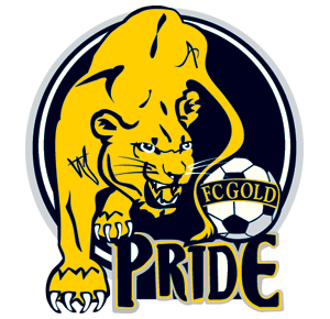 FC Gold Pride association football club