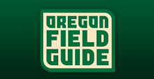 Oregon Field Guide Logo 2010.png