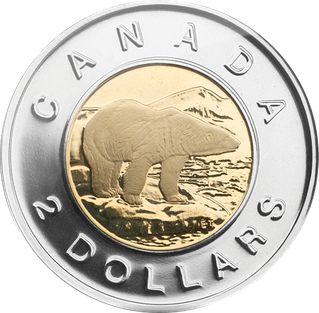 Image result for toonie
