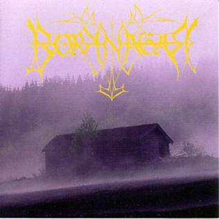 Borknagar (album) - Wikipedia