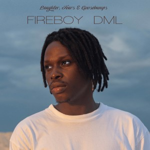 <i>Laughter, Tears and Goosebumps</i> 2019 studio album by Fireboy DML