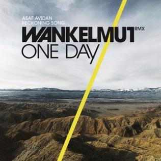 Asaf Avidan - One Day / Reckoning Song (Wankelmut Remix) (studio acapella)