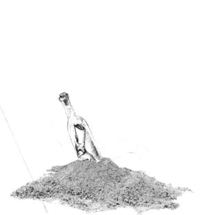 Surf Donnie Trumpet The Social Experiment Album