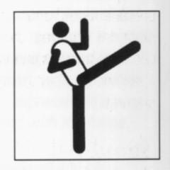 Taekwondo at the 1988 Summer Olympics Taekwondo competition