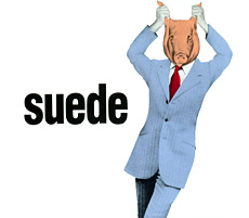 Animal Nitrate 1993 single by Suede
