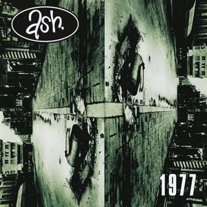 Image result for 1977 ash