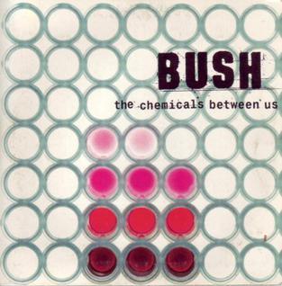 Bush_-_TCBU.jpg