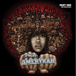 Erykah Badu - New Amerykah.jpg