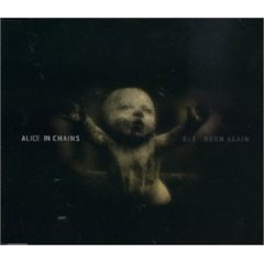 Get Born Again 1999 single by Alice in Chains