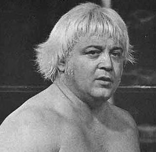 Ray Stevens (wrestler) American professional wrestler