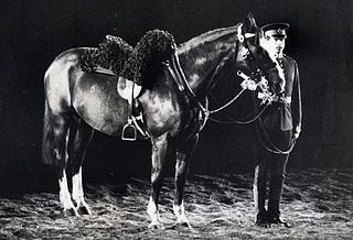 File:Sefton Horse of the Year.jpg