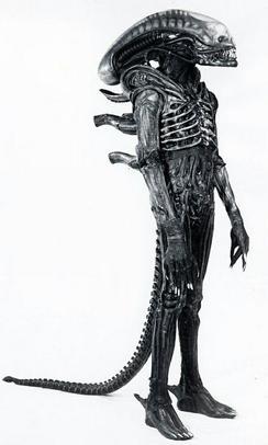 Something is. alien between her legs think, that