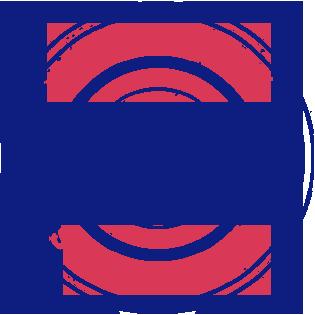 Aeronautical Society of India