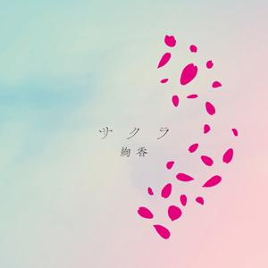 Sakura (Ayaka song) single