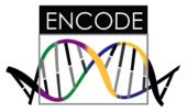 ENCODE logo.png