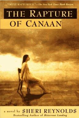 Analyzing the regional aspects in sheri reynolds the rapture of canaan