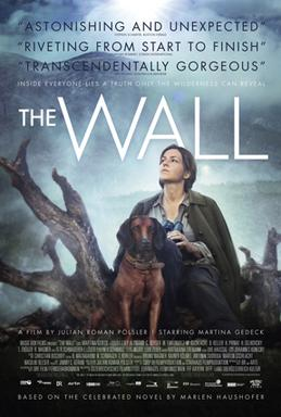 Picture of a movie: Die Wand