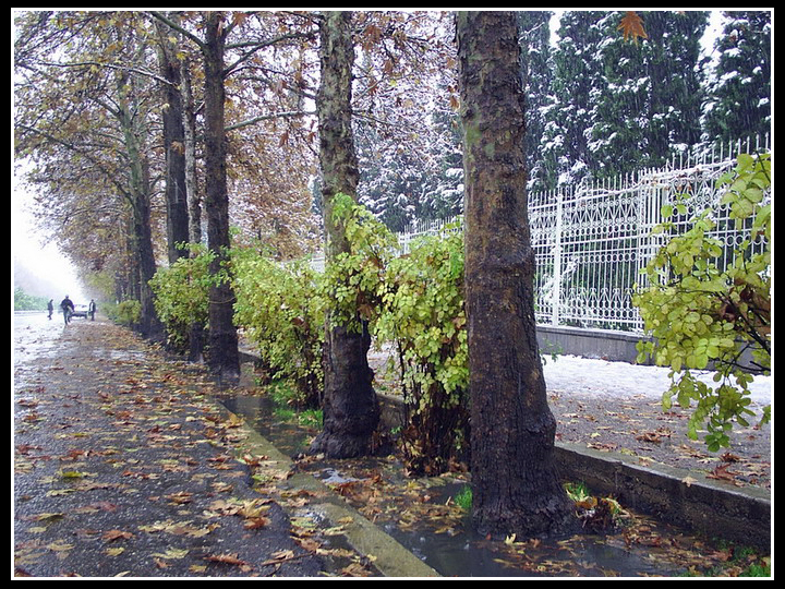 File:Shiraz Snow 850926 10.jpg
