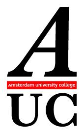Amsterdam University College in Canada