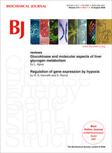Image:Biochemical Journal Front Cover.jpg