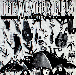 Its Raining Men 1982 single by the Weather Girls