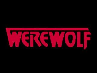<i>Werewolf</i> (TV series) American horror television series