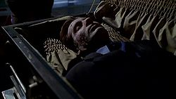 In a darkened room, a deceased man is lying in a coffin. His face is cracked and weathered; the effects of being buried for three months.