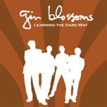 Learning the Hard Way 2006 single by Gin Blossoms