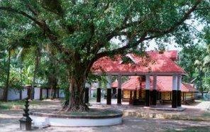Thamaramkulangara Sree Dharma Sastha Temple Hindu temple in Kerala