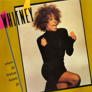 Whitney Houston — Where Do Broken Hearts Go (studio acapella)
