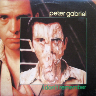 I Dont Remember (Peter Gabriel song) Peter Gabriel song