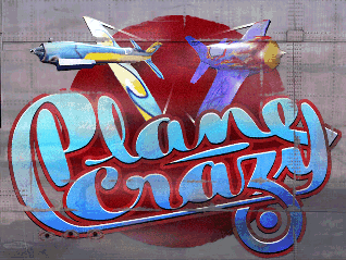<i>Plane Crazy</i> (video game)
