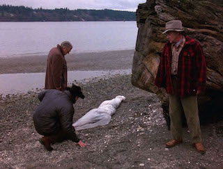 Pilot (<i>Twin Peaks</i>) 1st episode of the first season of Twin Peaks