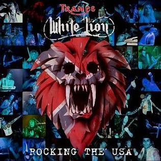 <i>Rocking the USA</i>